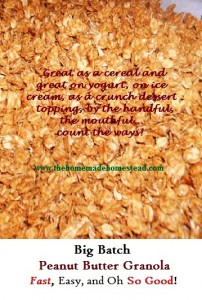 Peanut Butter Granola Graphic